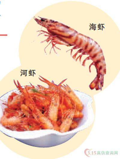 河虾与海虾的区别